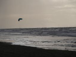 A lot of kite surfers on the beach