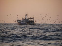 A fishing boat in the middle of the Biscay