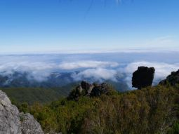 View from 1600 m