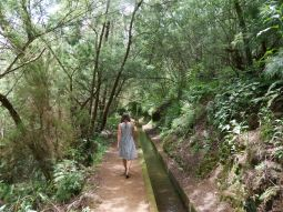 Walking along a levada