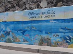 Welcome to Saba.